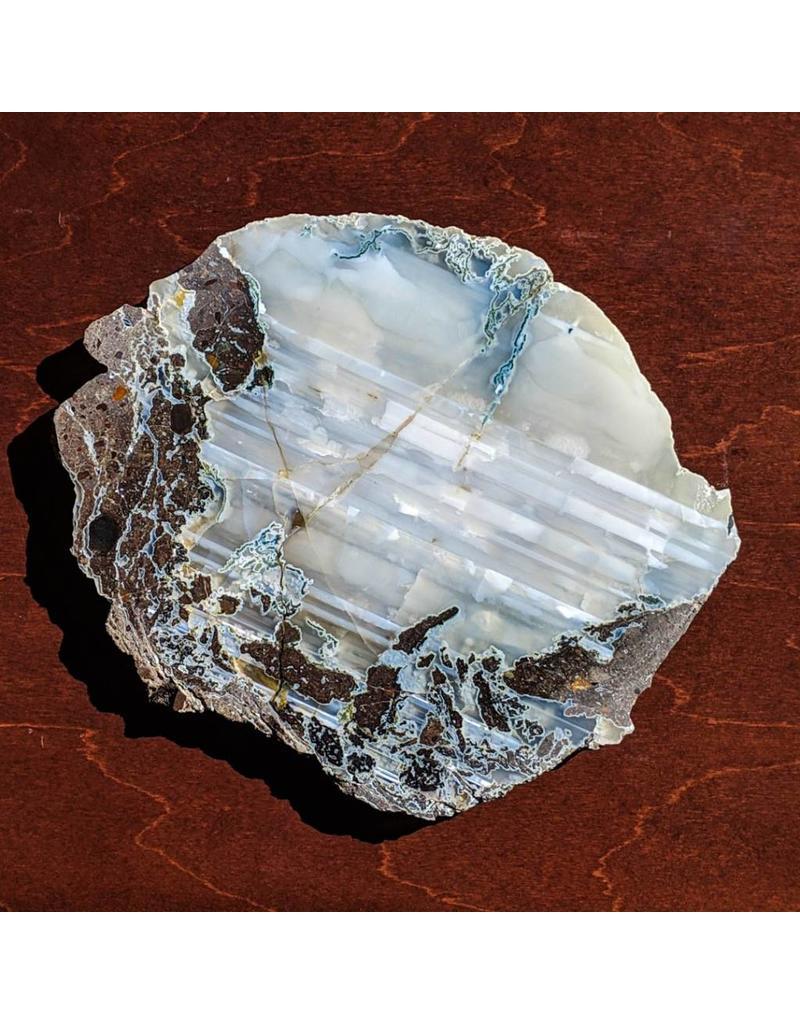 JH Stone Galleria Agate Conifer Limb Cast 200x170x12mm 774g Montana