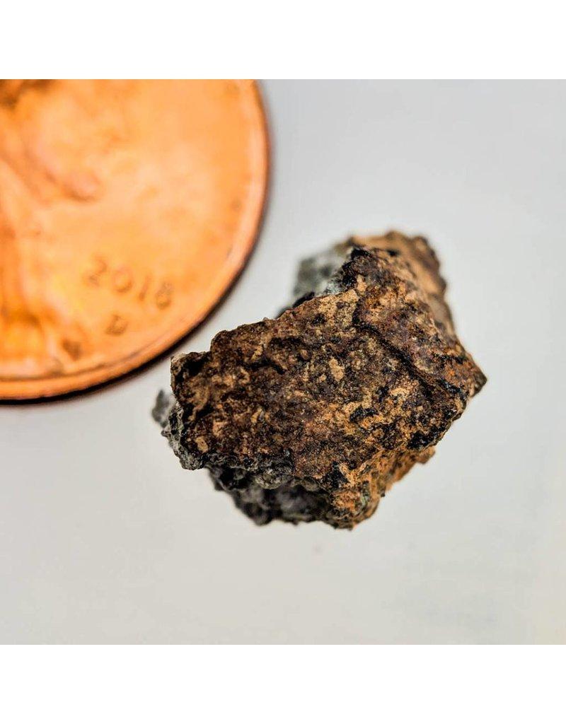 Shergottite Martian Meteorite Morocco