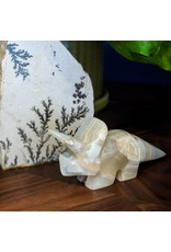 Mexican Onyx Triceratops