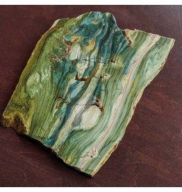 JH Stone Galleria Petrified Swamp Bog 182x135x10mm 507g Oregon Miocene