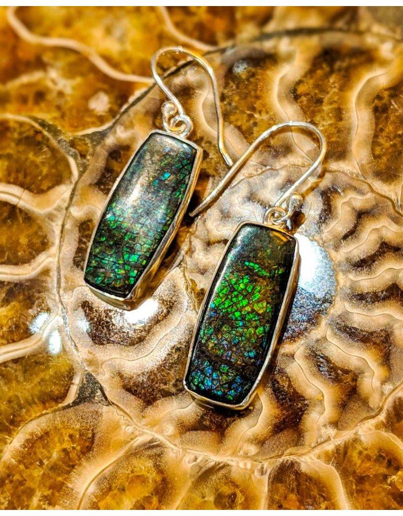 Ammolite Doublet Earrings