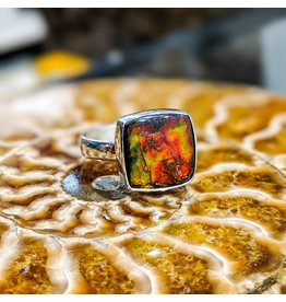 Ammolite Triplet Ring