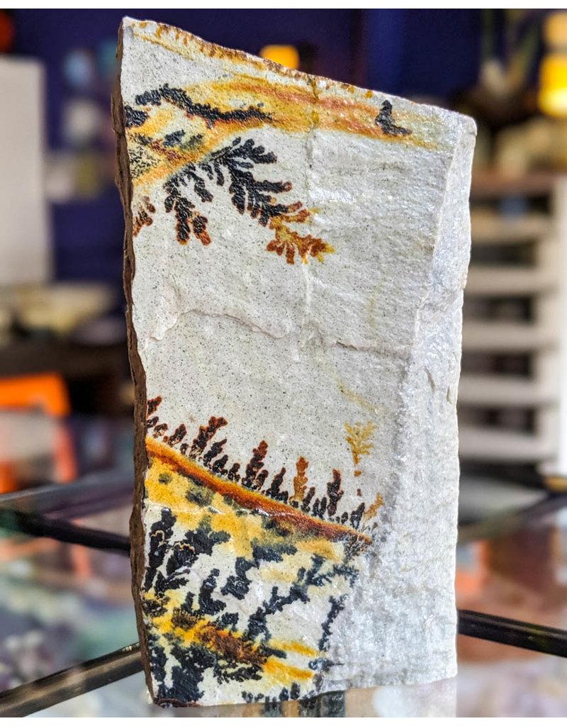 Dendrite Quartzite Utah 395g