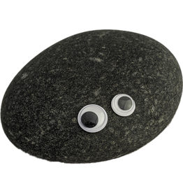 Igneous Theory Pet Rock Craft Kit
