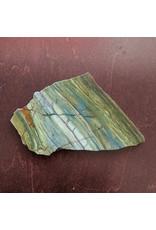 Petrified Swamp Bog 104x97x9mm 160g Oregon Miocene