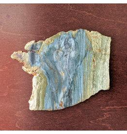 JH Stone Galleria Petrified Swamp Bog 109x87x5mm 80g Oregon Miocene