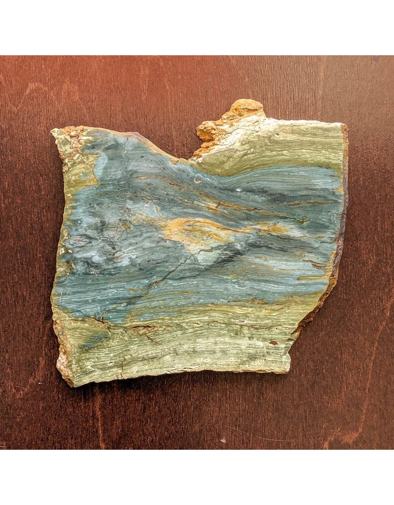Petrified Swamp Bog 112x97x5mm 103g Oregon Miocene