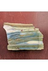 Petrified Swamp Bog 112x107x5mm 108g Oregon Miocene
