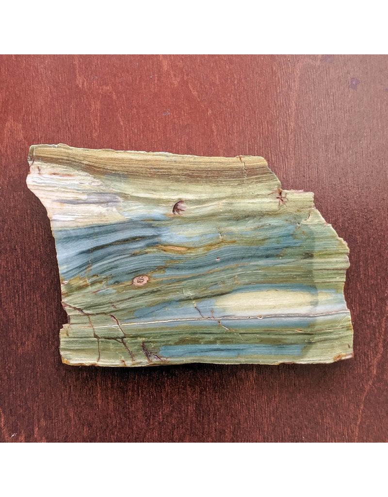 JH Stone Galleria Petrified Swamp Bog 112x107x5mm 108g Oregon Miocene