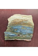 Petrified Swamp Bog 100x90x5mm 104g Oregon Miocene