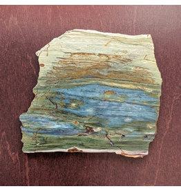 JH Stone Galleria Petrified Swamp Bog 100x90x5mm 104g Oregon Miocene
