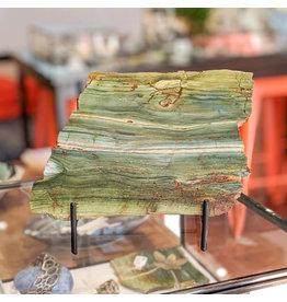 JH Stone Galleria Petrified Swamp Bog 185x125x10mm 445g Oregon Miocene