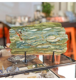 Petrified Swamp Bog 225x140x10mm 654g Oregon Miocene