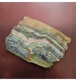 JH Stone Galleria Petrified Swamp Bog 227x157x13mm 974g Oregon Miocene