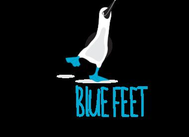 The Blue Feet Foundation