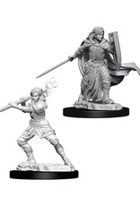 WizKids Dungeons & Dragons Nolzur's Marvelous Miniatures: Female Human Paladin