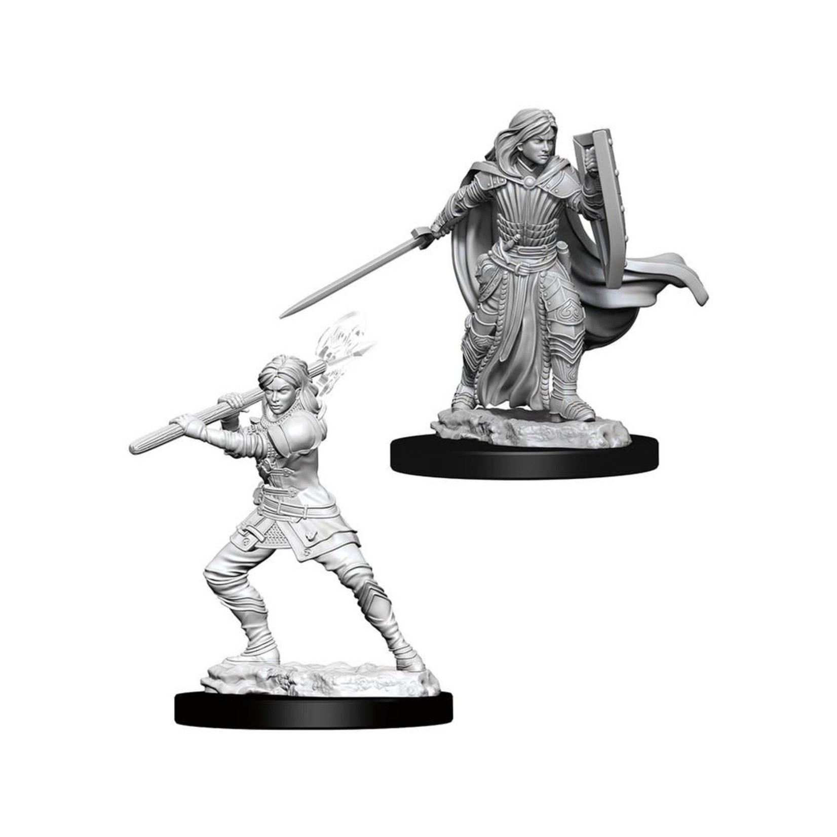 WizKids Dungeons & Dragons Nolzur's Marvelous Miniatures: Female Human Paladin