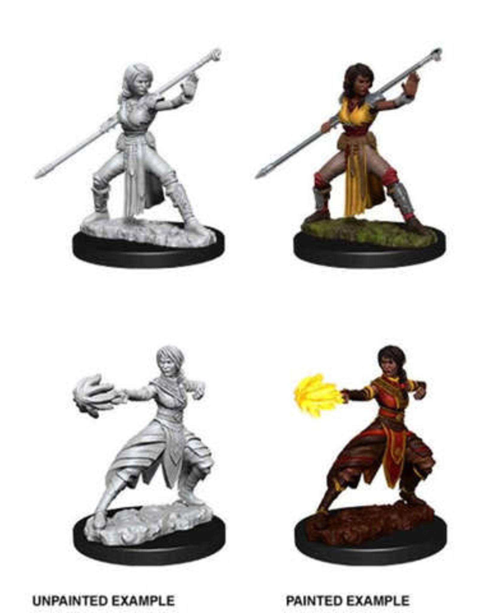 WizKids Dungeons & Dragons Nolzur's Marvelous Miniatures: Female Half Elf Monk