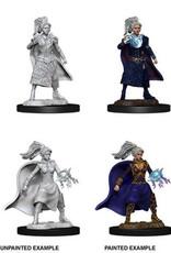WizKids Dungeons & Dragons Nolzur's Marvelous Miniatures: Female Human Sorcerer