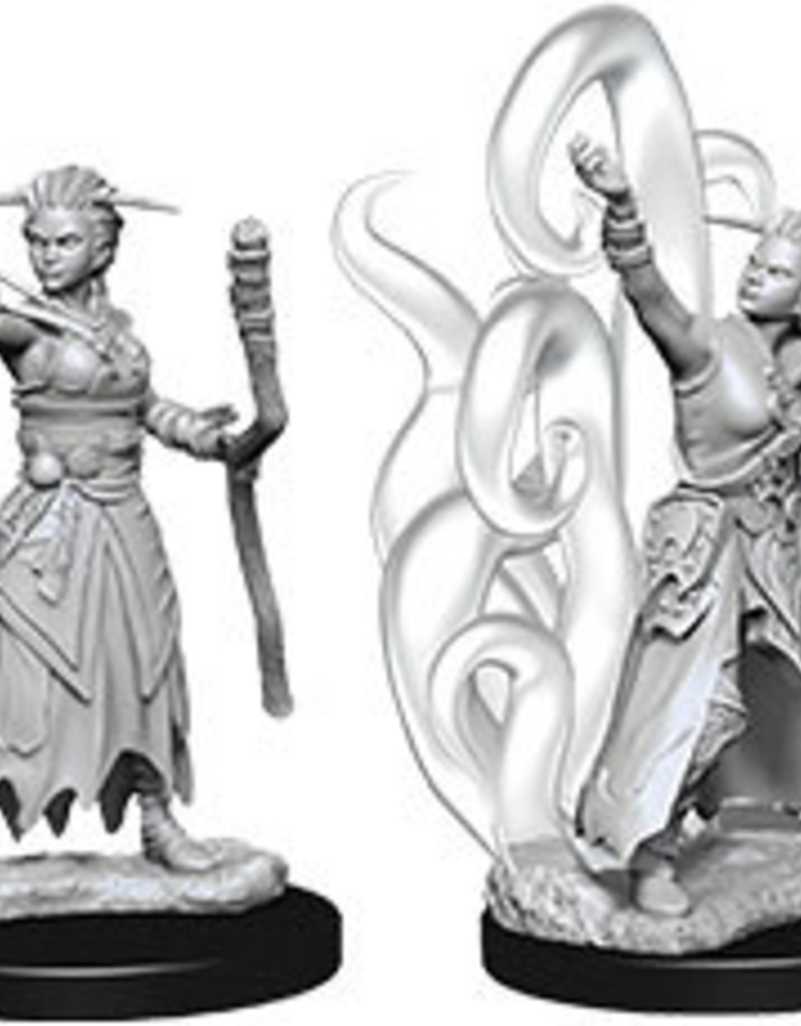 WizKids Dungeons & Dragons Nolzur's Marvelous Miniatures: Female Human Warlock