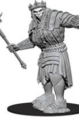WizKids Dungeons & Dragons Nolzur's Marvelous Miniatures: Fire Giant