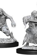 WizKids Dungeons & Dragons Nolzur's Marvelous Miniatures: Kenku Adventurers
