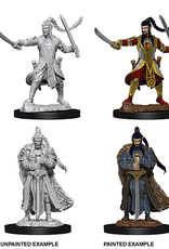 WizKids Dungeons & Dragons Nolzur's Marvelous Miniatures: Male Elf Paladin