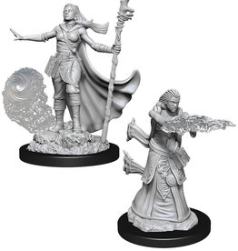 WizKids D&D NM: Female Human Wizard