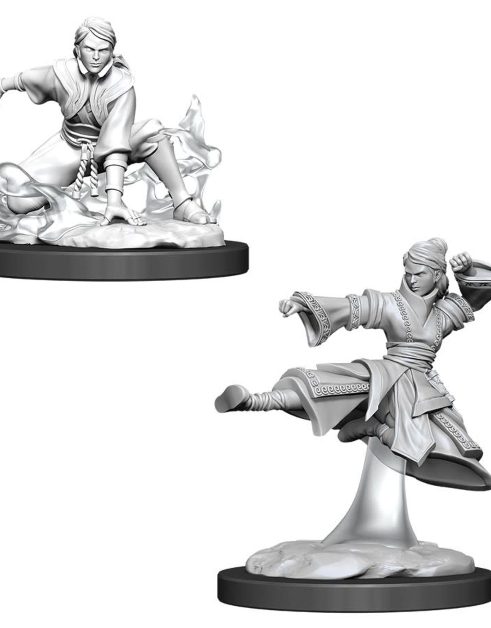 WizKids Dungeons & Dragons Nolzur's Marvelous Miniatures: Female Human Monk