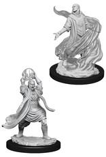 WizKids Dungeons & Dragons Nolzur's Marvelous Miniatures: Male Elf Sorcerer