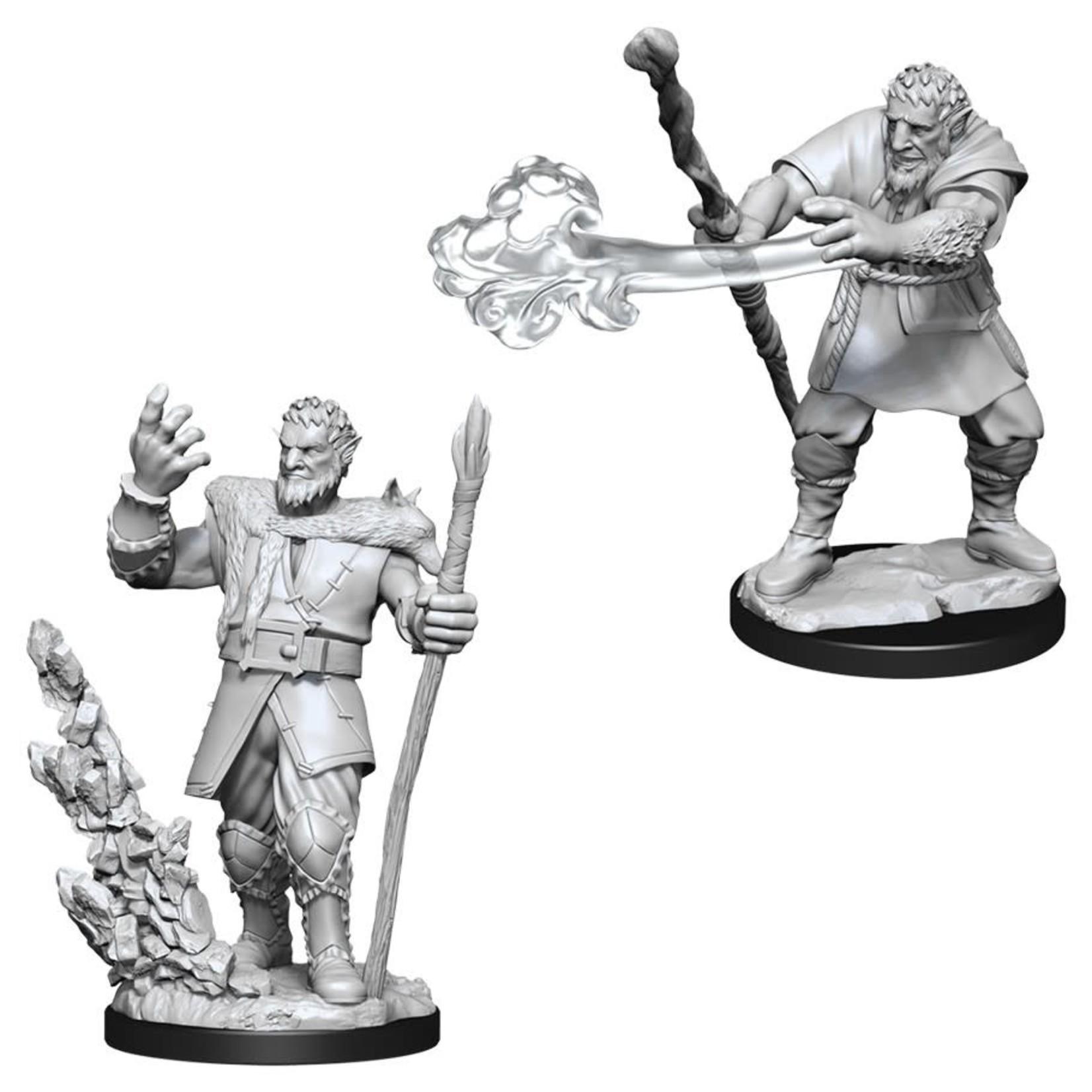 WizKids Dungeons & Dragons Nolzur's Marvelous Miniatures: Male Firbolg Druid