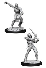 WizKids Dungeons & Dragons Nolzur's Marvelous Miniatures: Wight & Ghast