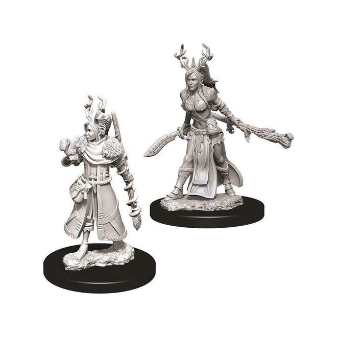 D&D NM: Female Human Druid