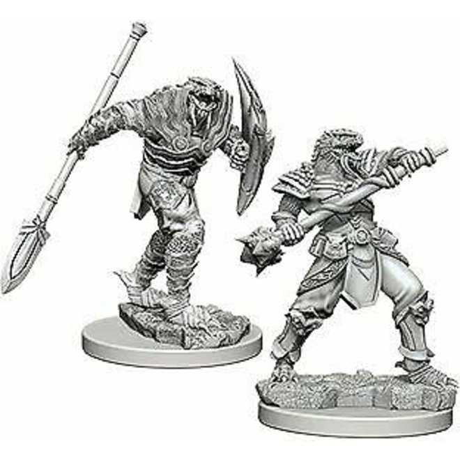 D&D NM: Dragonborn Male Fighter with Spear