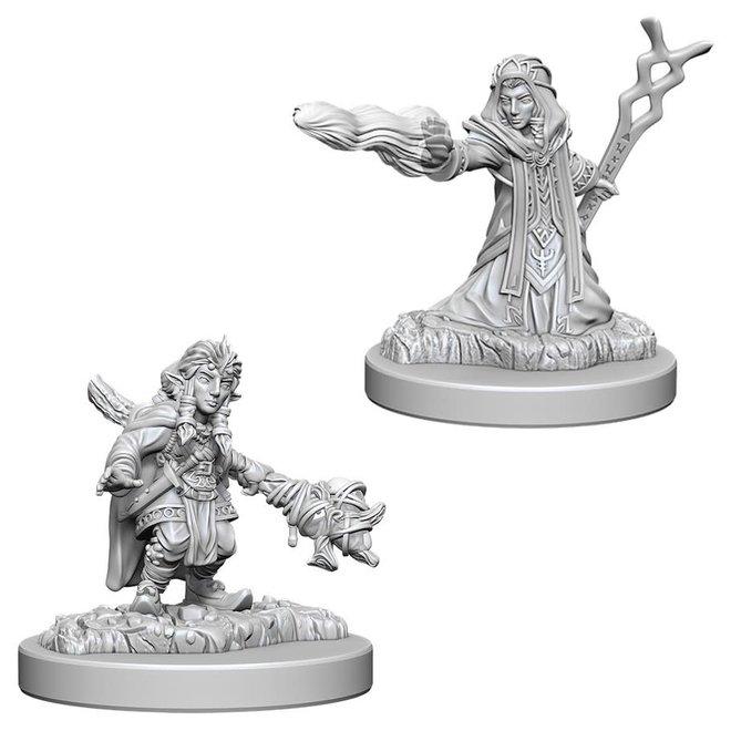 D&D NM: Female Gnome Wizard
