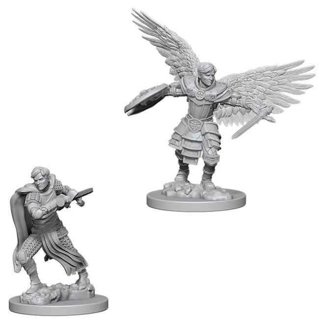 D&D NM: Male Aasimar Fighter