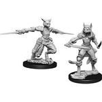 WizKids D&D NM: Female Tabaxi Rogue