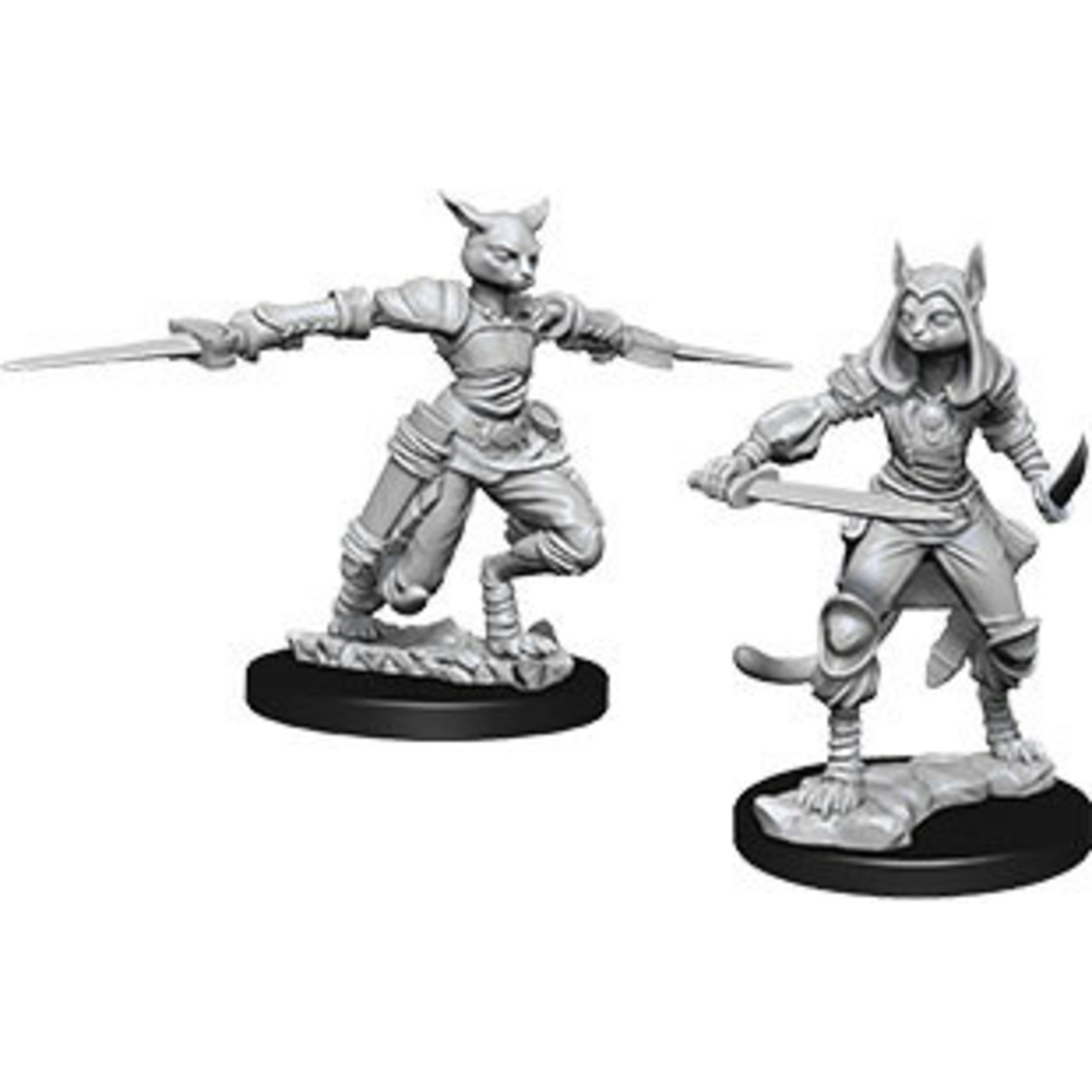 WizKids D&D NM: Female Tabaxi Rogue