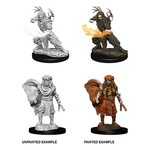 WizKids D&D NM: Male Human Druid