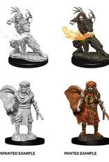 WizKids D&D NM: Male Human Druid