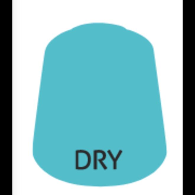 Dry: Skink Blue (12ml) Paint