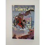 IDW PUBLISHING TMNT #110, Ronin Preview