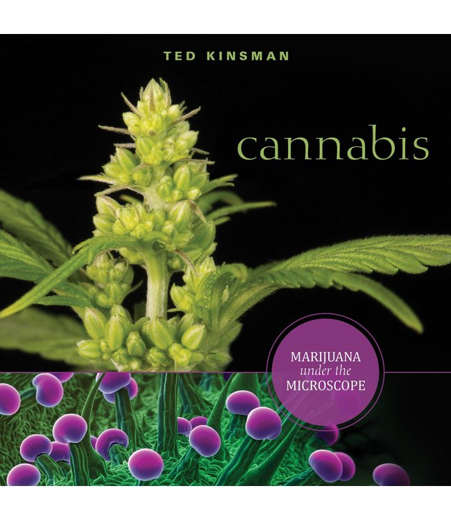 Cannabis: Marijuana Under The Microscope (Ted Kinsman)