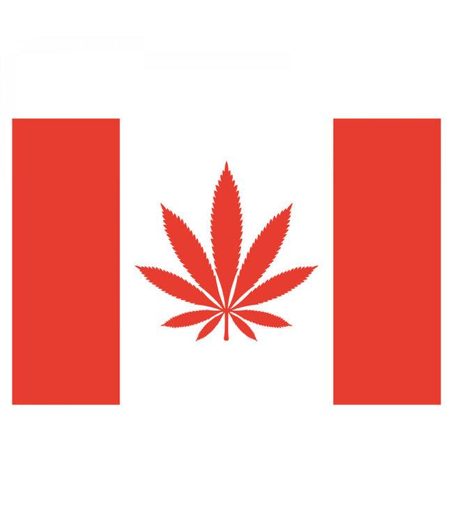 """My Dab Mat My Dab Mat 11"""" x 8.5"""" Silicone Canada Leaf"""