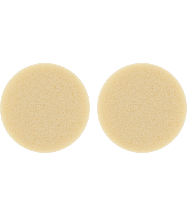 Storz and Bickel Storz & Bickel Volcano Air Filter Set of 2