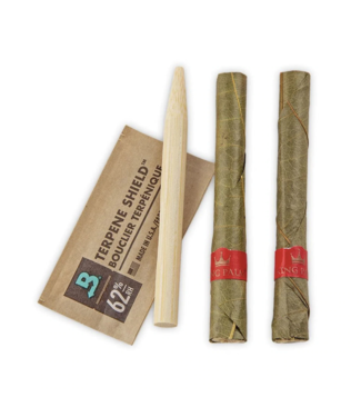 King Palm King Palm Mini Pre-Roll Pouch 2-Pack