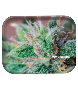 "Pulsar Pulsar 11"" x 7"" Metal Rolling Tray - Medium - Blue Dream"