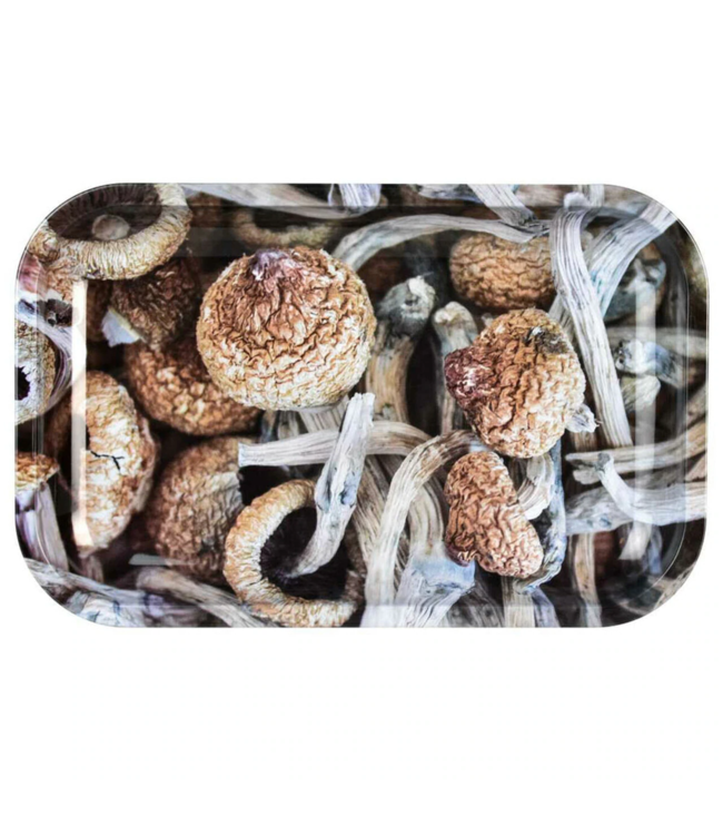 "Pulsar Pulsar 11"" x 7"" Metal Rolling Tray - Medium - Mushroom Caps"