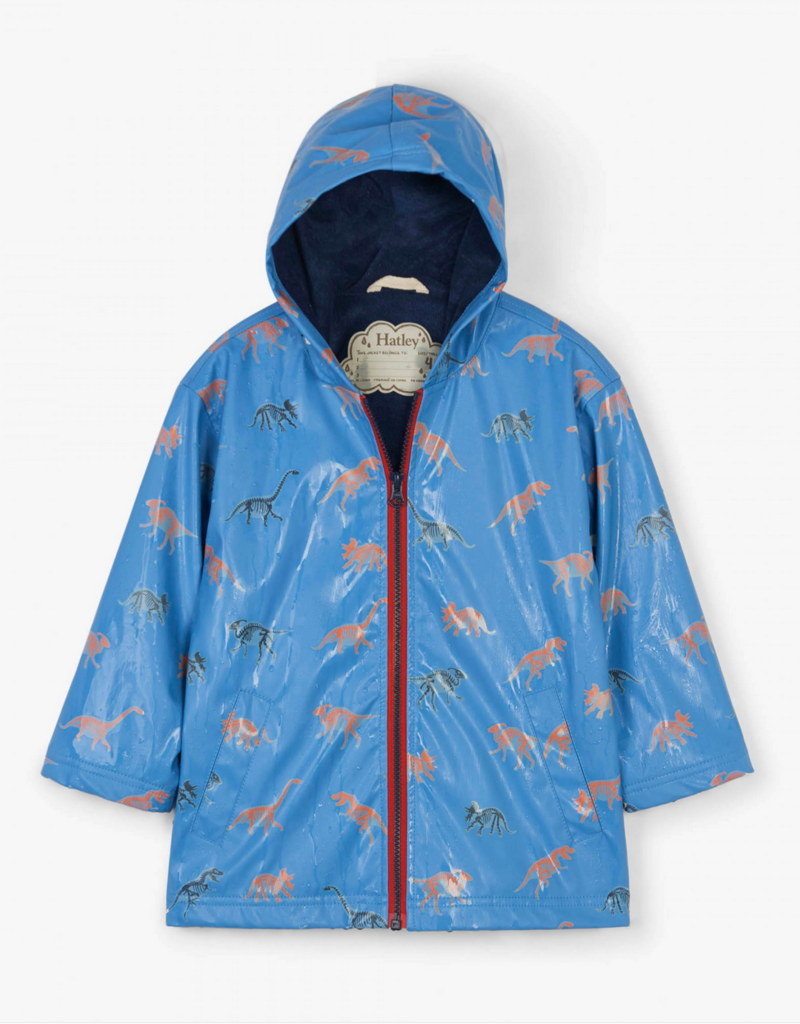 Dino Color Changing Raincoat