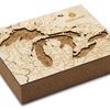 "Great Lakes Cork Map 8"" x 10"""